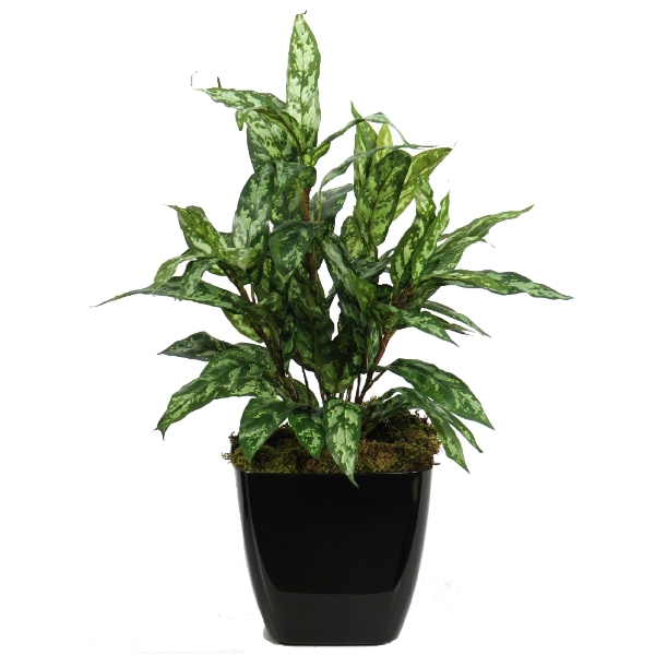 Artificial Aglaonema Bush flame retardant plant