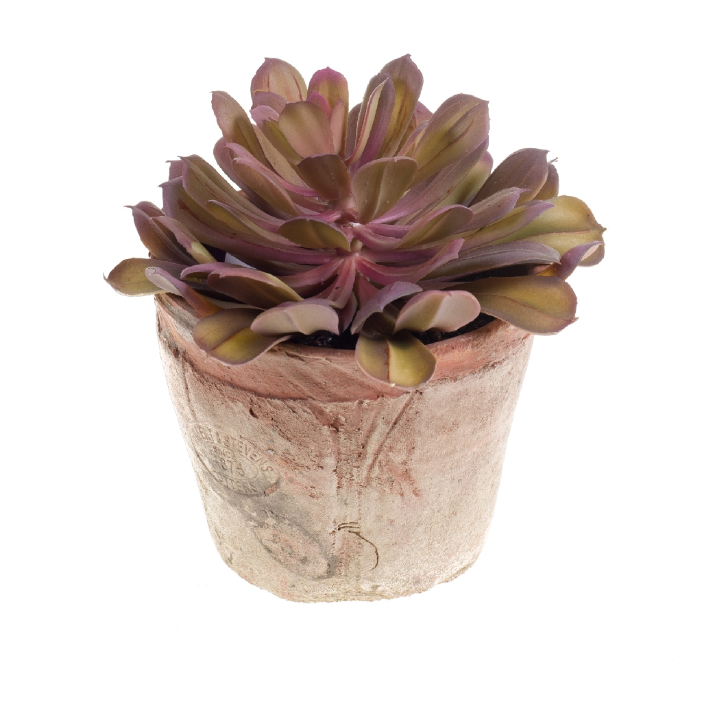 Artificial Echeveria Bush Succulent Potted Plant