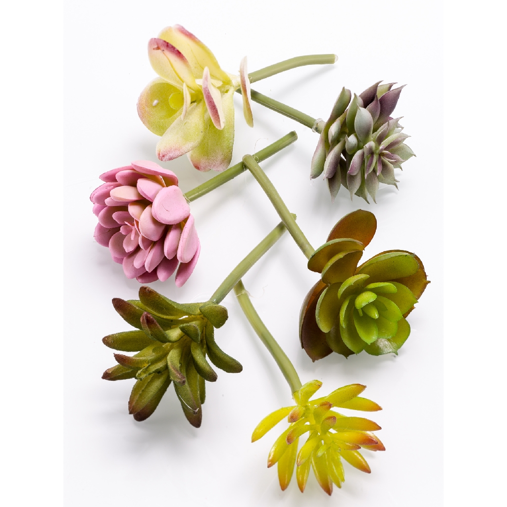 Artificial Succulents Assortment