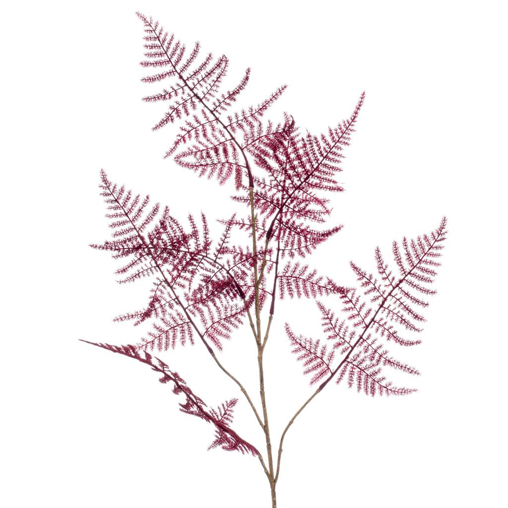 Artificial Asparagus Spray Burgundy