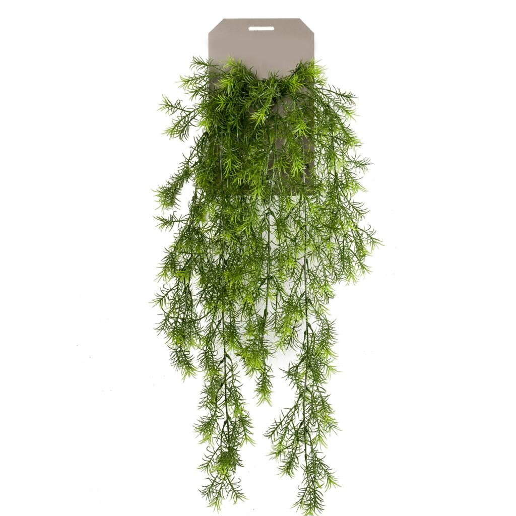 artificial hanging asparagus sprengeri bush