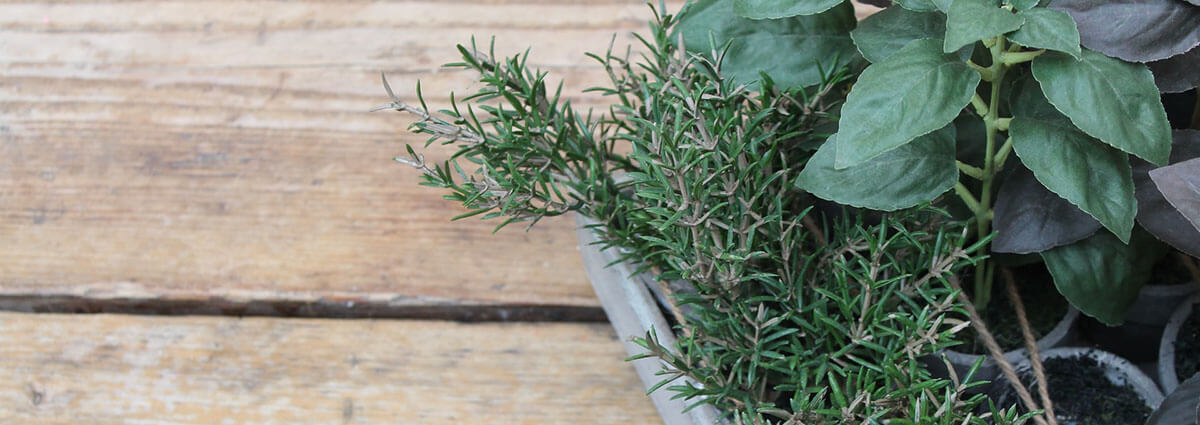 Herb it Up – Artificial Herbs For Decorating