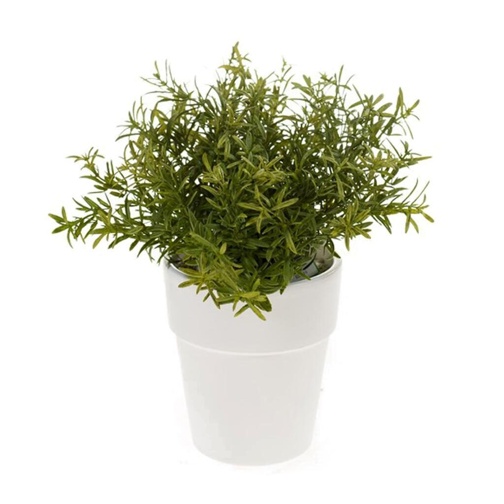 artificial potted rosemary