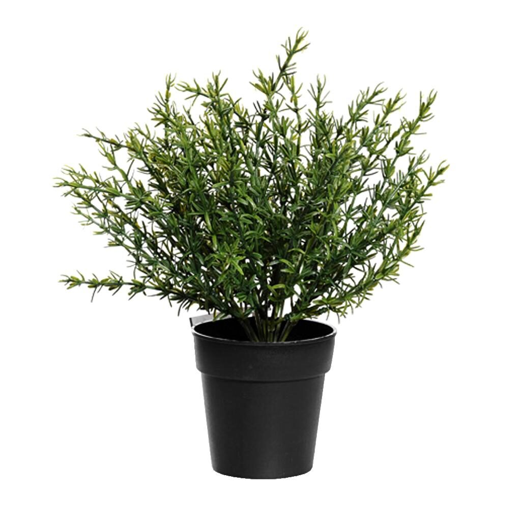 artificial thyme in pot