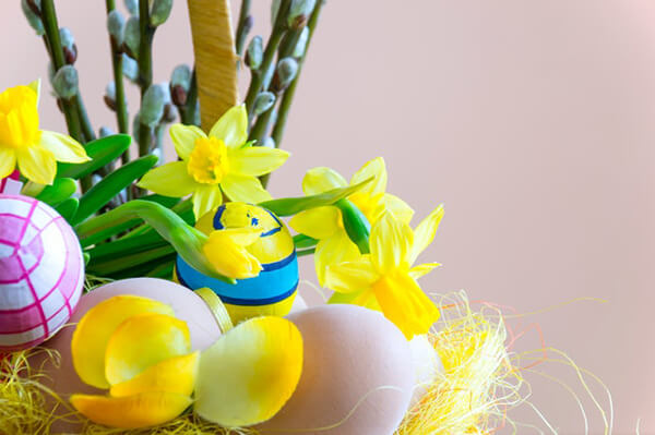 easter egg hunt supplies - indoor decorations eggs daffodils