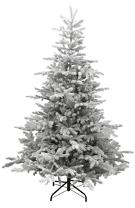 Grandis Grey Fir Frosted Christmas Tree