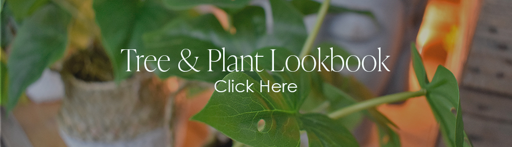 artificial plants and trees - lookbook