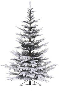 Nobilis Fir Flocked Christmas Tree